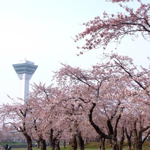 【6/1までお得!】函館観光におすすめ★『食』を愉しむ湯浴みステイ♪