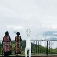 六甲山で芸術の秋を!六甲ミーツ・アート芸術散歩2019 鑑賞チケット付プラン<素泊まり>