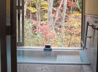 お部屋の景色は渓流又は眺望、のんびりしたいかた向き