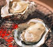 【冬の味覚祭】伊勢えびお造り・焼き牡蠣・かに鍋に和牛や鯛&あわび舟盛り付!ポイント2倍