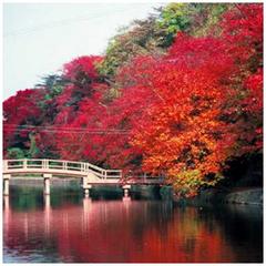 秋のファミリープラン朝食付き 「特典満載♪」 【添い寝無料】【紅葉】