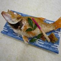 新潟の高級魚★グレードアップ◎のど黒の塩焼き尾頭付】★お部屋食または個室(夕食時)