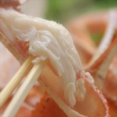 【かに会席プラン】 ちょこっと蟹とお肉も楽しめるバランス型のスタンダード会席  山陰冬の香りを堪能♪