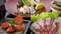 野菜好きのための【オーガニック野菜いっぱいプラン】