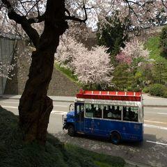 ★卒業旅行応援★金沢旅行の思い出づくり★3名様以上はツイン添寝対応★【食事なし】★