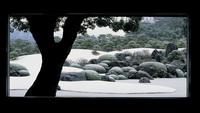 SH【足立美術館×松月】 提携プラン♪夕食部屋食スタンダード会席♪姫寿司&海の幸&鳥取県産和牛付