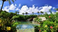 【琥珀色の天然温泉】碧と花々に囲まれた「シギラ黄金温泉」チケット付きプラン/朝食付
