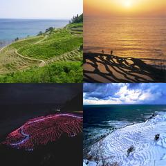 【大漁盛りプラン】たっぷり!10種盛りのお造り付き☆真浦港や宇出津港で獲れたピチピチの鮮魚を堪能♪