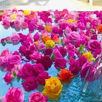 【特典付】〜きらり女子旅プラン〜バラの花 約500個を露天風呂に浮かべて〜