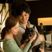 <ドッグフレンドリールーム>【2〜3泊でお得】連泊割ECO還元プラン〜観光地・函館で「暮らす」体験を