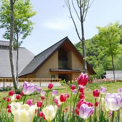 【2018GW日程ご予約承り中】南会津は今が桜の季節です!お花見を兼ねて春風薫る休日エンジョイ!