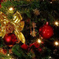 【時期をずらして探訪】クリスマス期間でしか味わえない特別なフレンチディナー(夕朝食付き)