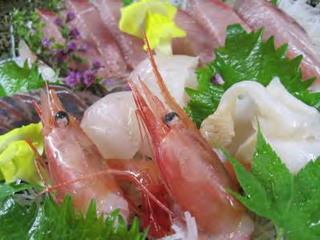 わんちゃんと一緒にグランピング♪【至福】のどぐろ1尾+極上牛+地魚盛り合わせ+加賀野菜♪