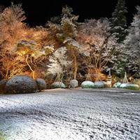 【冬の那須高原を満喫】人気のすき焼き会席プラン