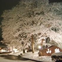 【冬の那須高原を満喫】人気のしゃぶしゃぶ会席プラン