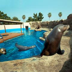 九州の海とふれあえる水族館へ行こう!★「マリンワールド海の中道」入館券付宿泊プラン