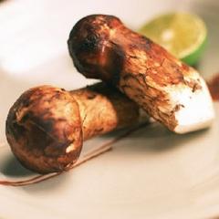 【9月◆秋季限定】<米沢牛陶板焼き×松茸の釜飯>食欲の秋を蔵王で堪能!旬の味覚満載プラン