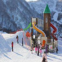雪の遊園地♪湯沢高原&布場スノーランドエクスペリエンス券付♪雪見露天と旬の冬会席を満喫♪