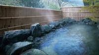 黒・白・とろとろ湯♪3種の泉質を楽しむ温泉ファン満喫プラン《4月〜9月》
