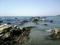 ♪夏休み 太平洋を眺めながら朝食を! ペンションの目の前で海水浴 イン前の施設利用も無料でOK