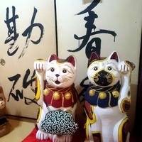 【 猫好き必見 】山口の新名所?一風変わった通称「猫寺」で『猫三昧』♪【特典付】