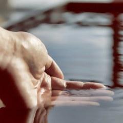 【創業60周年・大感謝プラン】豊洲亭☆和食会席「豊洲膳」