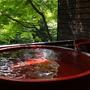 「禁煙」露天風呂付客室・和室12畳【もみじの間】信楽焼風呂