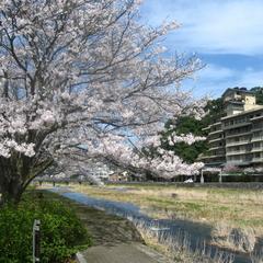 【春のオススメ】鳥取の春の味覚を味わう「旬彩味覚会席」