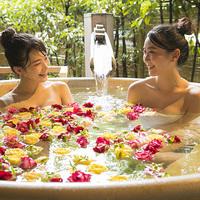 【ひとり旅プラン】「会席料理」「温泉」に浸る、自由きままな、ご褒美時間!