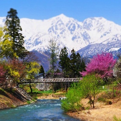 2021【冬】白馬アルペンリゾートと温泉満喫【おまかせ和室】1泊2食付