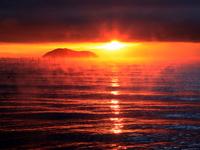 【添い寝歓迎】ご夕食は滋賀牛ステーキ/朝食は焼きたてパンの洋食/琵琶湖目の前、メタセコイヤ近く