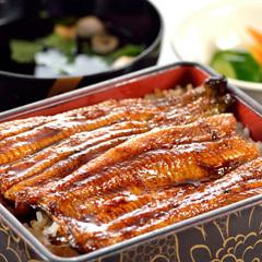【春夏旅セール】民芸割烹「いなんば」で食す!浜松名物うな重プラン