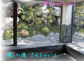 ■北八ヶ岳(蓼科山、北横岳他)森と池の大自然満喫!魅力の楽園へのビーナスライン沿い登山口至近!■