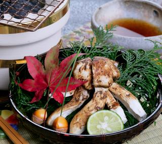 【松茸コースがこのお値段で!?】初秋の『松茸懐石』をお得な料金でお楽しみ頂ける秋のご旅行プランです♪