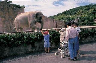 九十九島動植物園[森きらら] 入園引換券付プラン●朝食バイキング付●