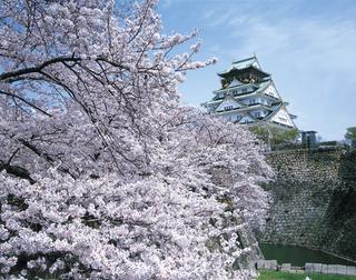 桜花爛慢2食付☆和食特別懐石プラン〜♪