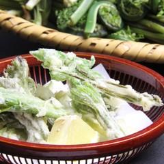 【春季限定】 瑞々しい「山菜」を堪能♪信州の四季を楽しむ春の山菜プラン 《1泊2食付》