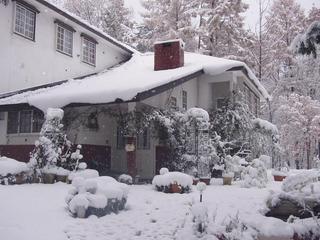 楽しみな1泊2食スタンダードプラン(栂池、岩岳、スキー場のリフト割引券ご用意できます)