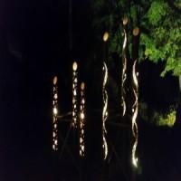 高遠の桜・南信州古桜巡りと星空・歴史巡りの旅