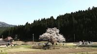 【春のあば村】滝めぐりトレッキングツアー☆1泊3食付き