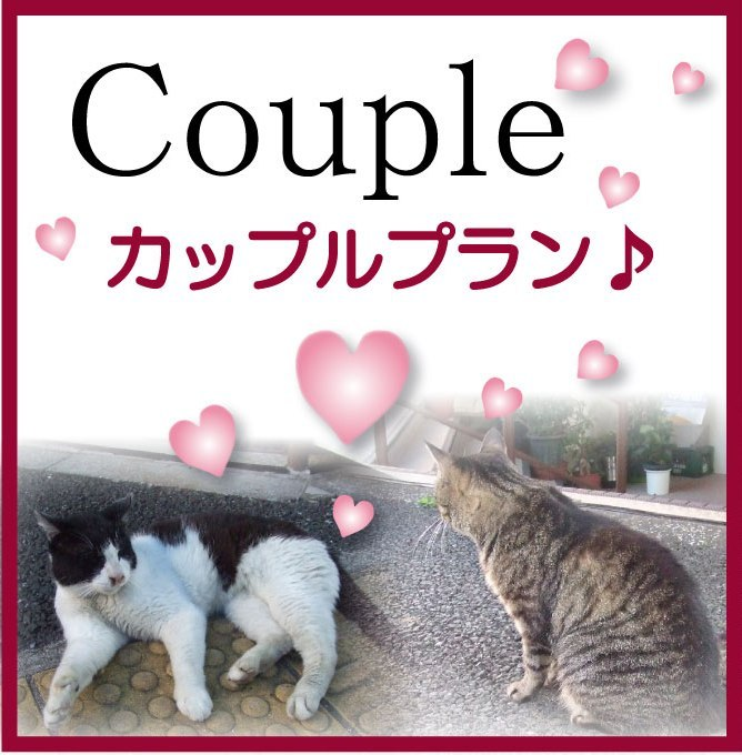 ☆楽パック限定幸せカップル・ご夫婦プラン♪☆ ■セミダブル■