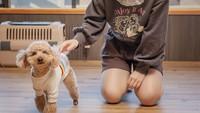 【全線開通記念特別プラン】 愛犬STAYプラン〜大切な家族と一緒に宿泊/ペット同伴可/室数限定
