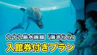 【九十九島水族館「海きらら」入館券付】プラン♪素泊まり