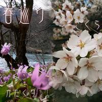 【春の花めぐり】花を愛で、飲みたい<桜ビールの特典付>豊かな色彩に包まれて、花々薫る季節を巡る旅