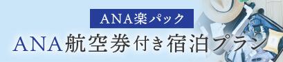 ANA航空券付きプラン
