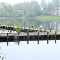 [一泊朝食付]信州蓼科の朝を愉しむ♪一日のはじまりは〝湖の美〟の和朝食で♪【温泉】