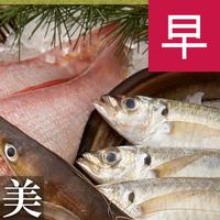【さき楽28×美味爛漫 美食二ツ星】 贅沢な四季の味覚を 長州四季料理 〜雅〜 高級会席