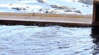 【旅の応援】1泊朝食付きプラン◆観光&ビジネスにも便利◆オーシャンビューの部屋◆