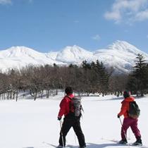 【ネイチャーガイド付】冬の知床5湖スノーシュープラン♪真っ白な雪原の景色を堪能☆