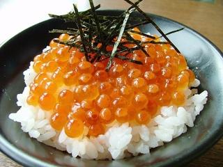 【夏得・夕食付プラン】北海道の旬の海鮮三昧☆